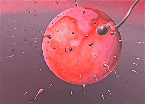 muzh-est-spermu-lyubovnika-zheni