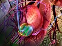 Лечение больных раком предстательной железы при помощи высокодозной брахитерапии