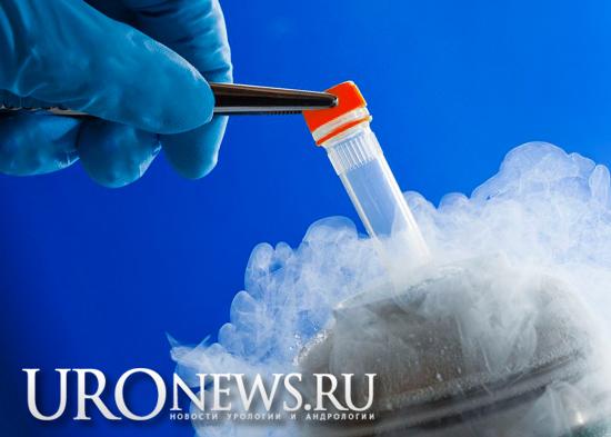 Влияет ли криоконсервация спермы на оплодотворение при азооспермии или криптозооспермии?