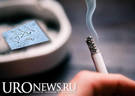 Курение сигарет и качество спермы. Новый мета-анализ.