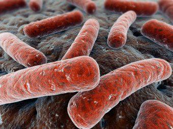 Туберкулез мочеполовой системы — современный взгляд на проблему