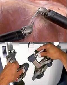 Пример работы рук