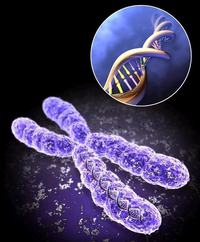 Изменения в спермограмме после лечения варикоцеле — причины?